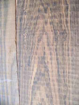 Bocote Wood Close Up