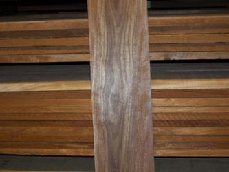Caribbean Rosewood is also known as Che Chen