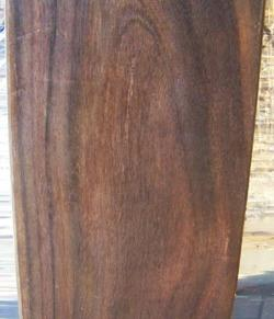East Indian Rosewood - Dalbergia latifolia