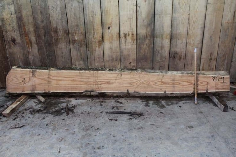 Slab 355-9, Rough Size: 2″ x 9″-17″ x 12′ $575