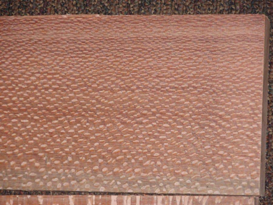 Leopardwood Lumber Close Up