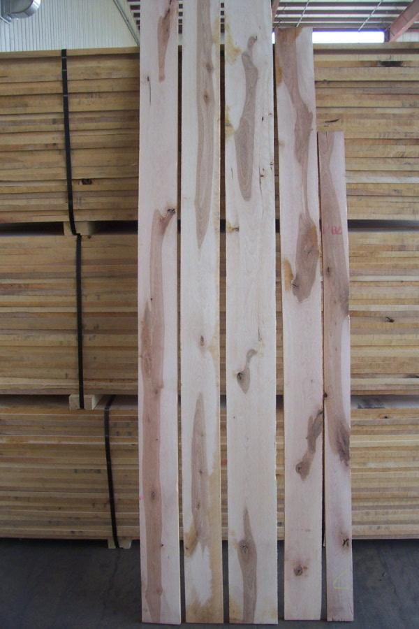 Yellow Wood Lumber ~ Yellow birch lumber wood vendors