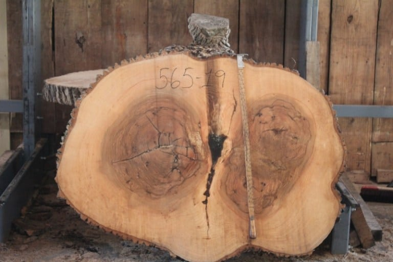 "round 565-19 rough size 4 "" x 40″-55″ Diameter $800"