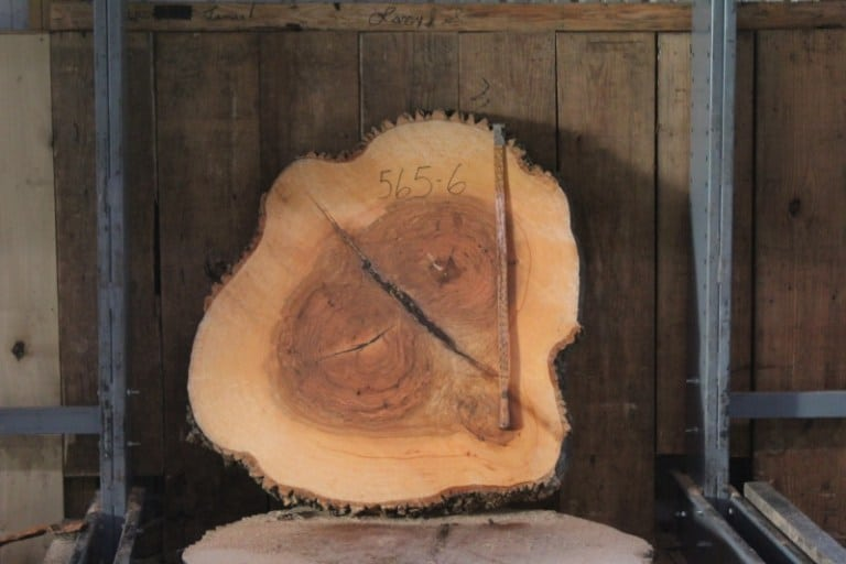 round 565-6 rough size 4″ x 42″-50″ Diameter $750