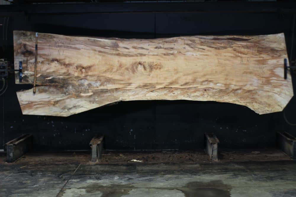Spalted Maple Slab 1024-5, Narrow Face, surfaced size  2 3/8″ x 35-50″ avg. 41″ x  13′ $1850
