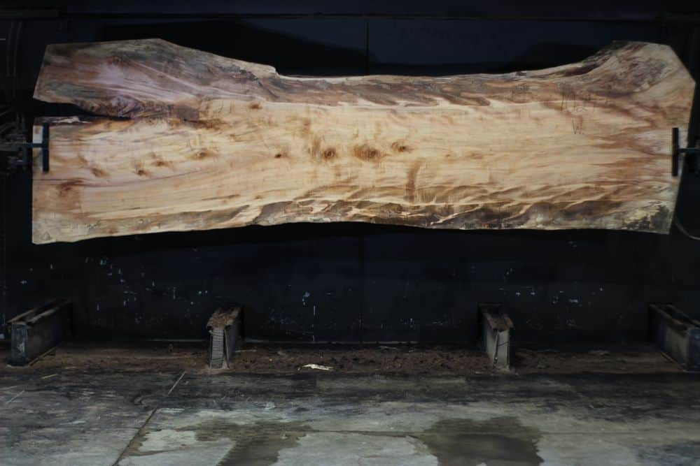 Spalted Maple Live Edge Slab 1024-5, Wide Face