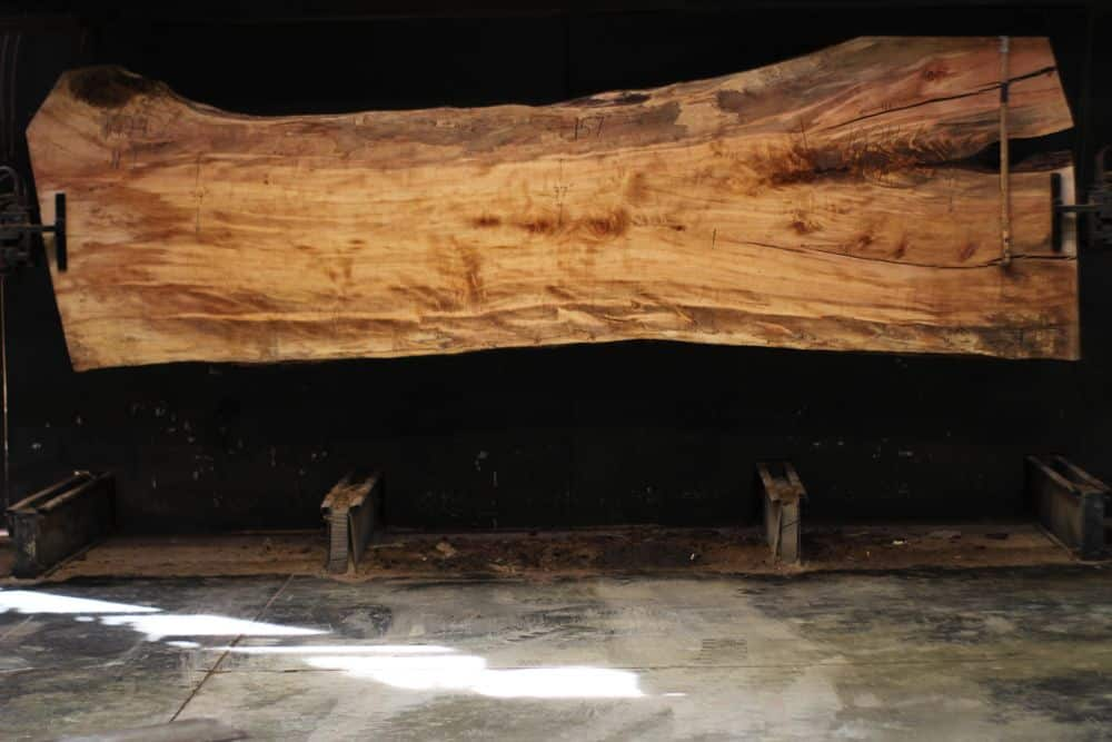 Spalted Maple Slab 1024-6, Narrow Face, surfaced size  2 3/8″ x 37-51″ avg. 43″ x  13′ $2100