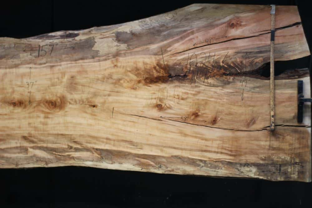 Spalted Maple Slab 1024-6, Narrow Face, Right Side