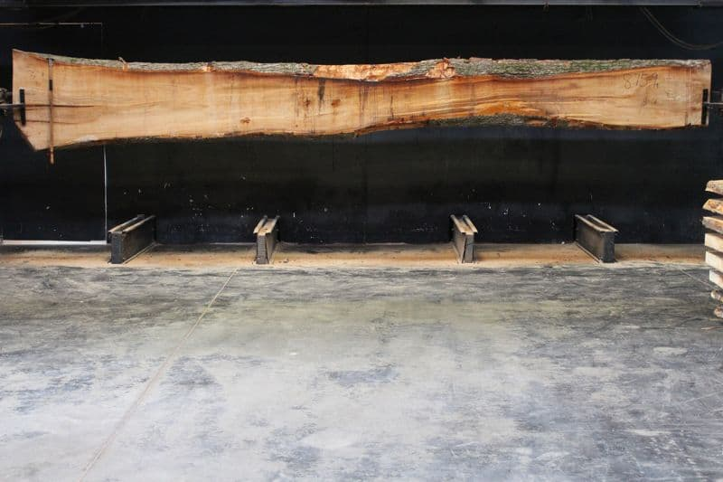Elm Slab 875-9, rough size 2.25″ x 8-31″ avg. 19″ x  19′ $700