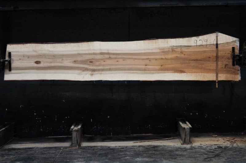 Curly Maple Slab 929-6, rough size 2″ x 22-31″ avg. 25″ x  12′ $850