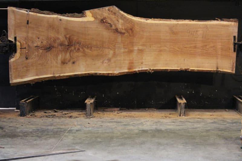 Siberian Elm Slab 945-11, rough size 2.5″ x 35-55″ avg. 40″ x 14′ $2250