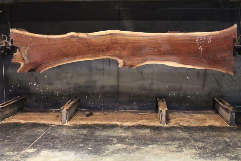 surfaced walnut slab 831-8 wide face