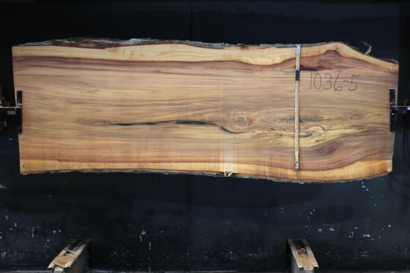 Red Elm Slab 1036-5, rough size 2.25″ x 34-40″ avg. 36″ x  9′ $1150